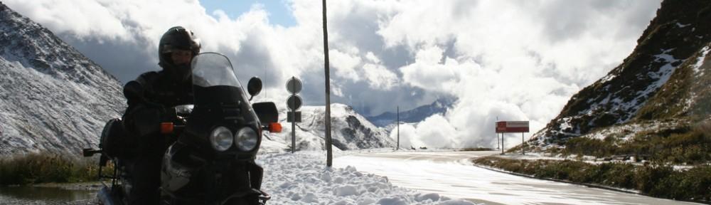 Adelmut im Schnee im August am Furkapass