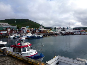 Island Tag 3: Die Piste von Húsavik nach Mývatn    Baustelle für ein Thermalgebiet